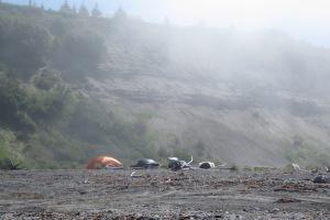 Camping-along-river