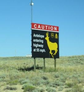 antelope-sign