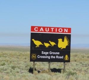 SAGR-Sign